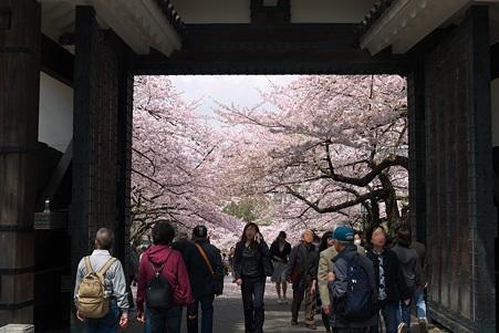 2011.04.11 皇居 北の丸公園 田安門