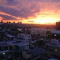 Photos: IMG_4555