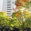 Photos: 2007_1122_canonA540_0065