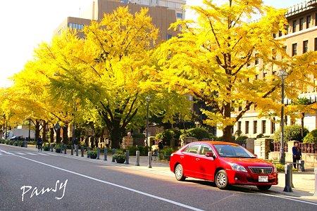 横浜日本大通りにて・・2