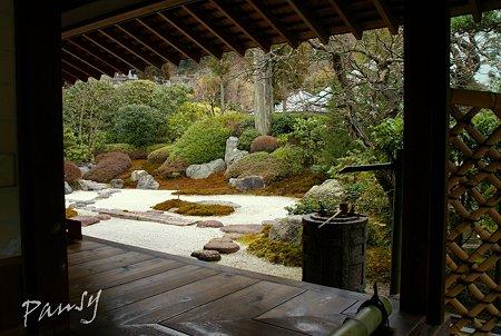 梅見月の浄妙寺・・3