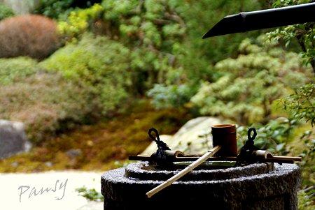 梅見月の浄妙寺・・4