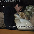 Photos: 紫音さんと悟空さん
