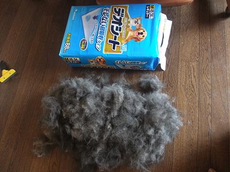 はじめての大量の毛