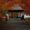 Photos: 安楽寺の山門!(091129)