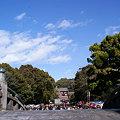 写真: 初詣は鶴岡八幡宮!