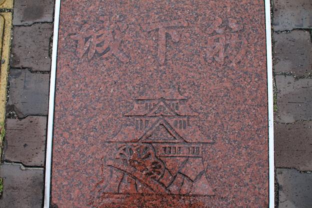 Photos: 岡山城?