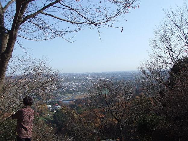弁天山から秋川臨む