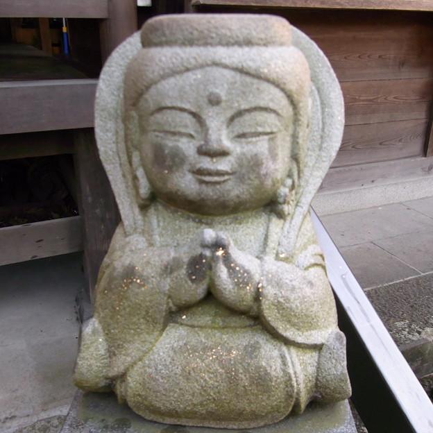 【東京|神社仏閣】 大円寺 (87)