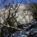 写真: 100116-43大岳山・馬頭刈尾根 つづら岩
