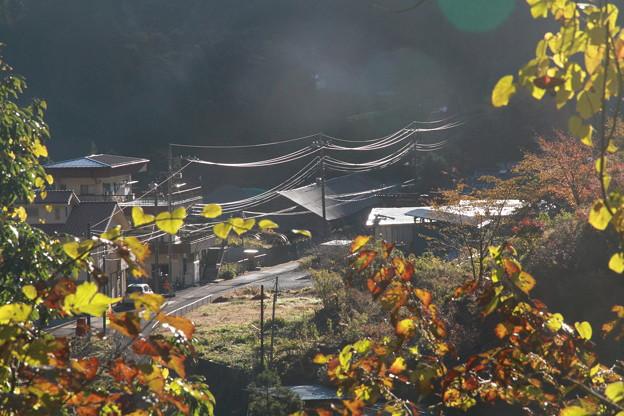 Photos: 101119-42電線