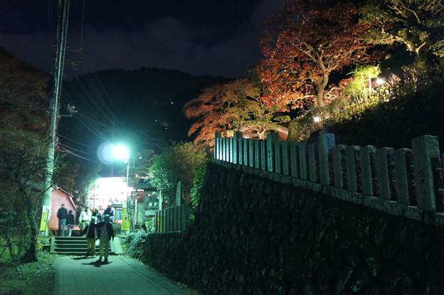 写真: こま参道