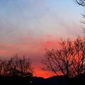 Photos: 大寒の夕焼け