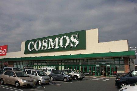 cosmos hisai interten-211225-2