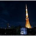 東京タワー(2009年ライトダウン伝説)_001