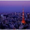東京タワー2011_011
