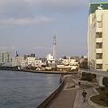 Photos: 清洲橋からスカツ