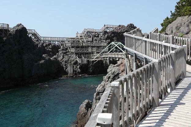 写真: IMG_6905神津島__天上山登山と島巡り