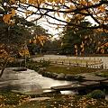 兼六園 雁行橋と旭桜の紅葉 曲水