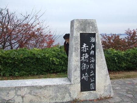 2009_11290030