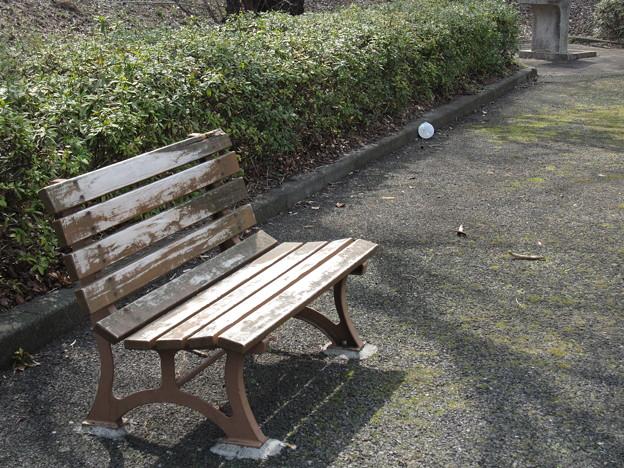 いろは坂桜公園