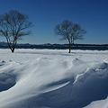 猪苗代湖畔は白の世界