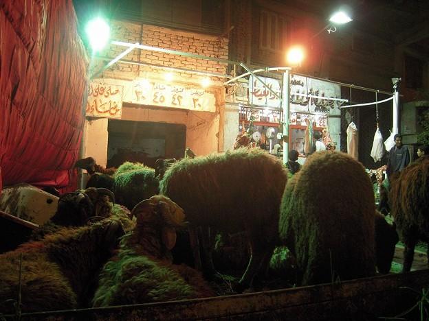 Photos: 夜の肉屋さん